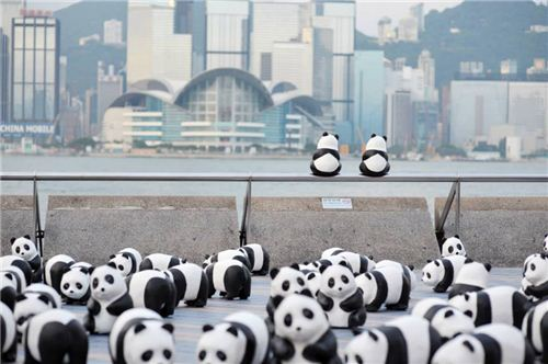 1600 Pandas at the Tsim Sha Tsui harboufront