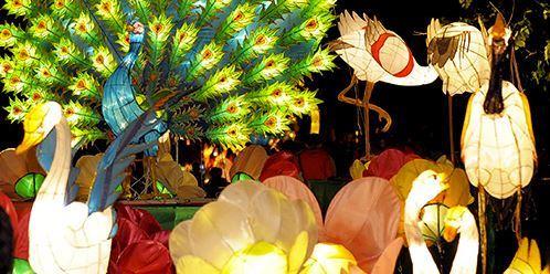 More elaborate lantern displays! Photo courtesy of discoverhongkong.com