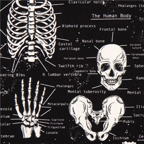 black glow in the dark skull skeleton fabric