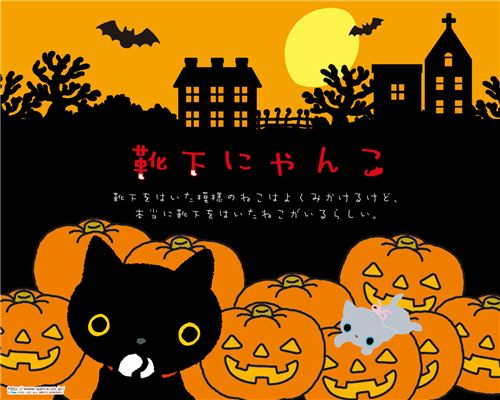Kutusita Nyanko cat with pumpkins wallpaper
